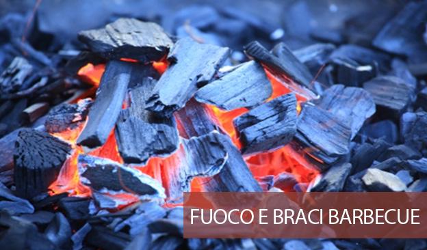 Come Accendere Fuoco Barbecue E Fare Buona Brace Con Legna Carbone